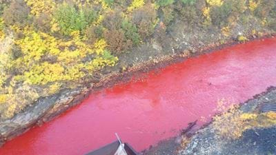 Russian River Runs Red