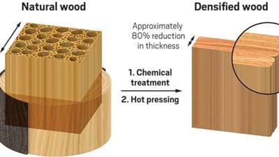 New densified wood is as strong as steel