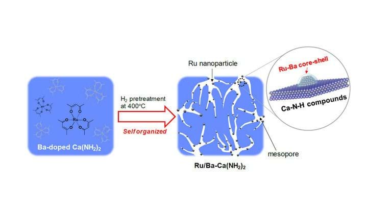Highly efficient ammonia synthesis with new catalyst - News - The