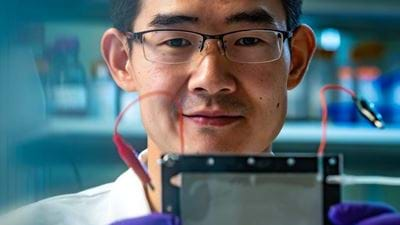 Picky porous electrodes take out toxins