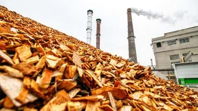 Report assesses the role of biomass in meeting climate change targets in the UK
