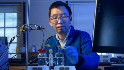 A catalyst for 'greener' hydrogen production