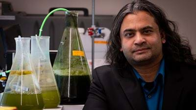 New process speeds up the production of biofuel from microorganisms