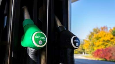 UK Government criticised for lack of progress implementing biofuels